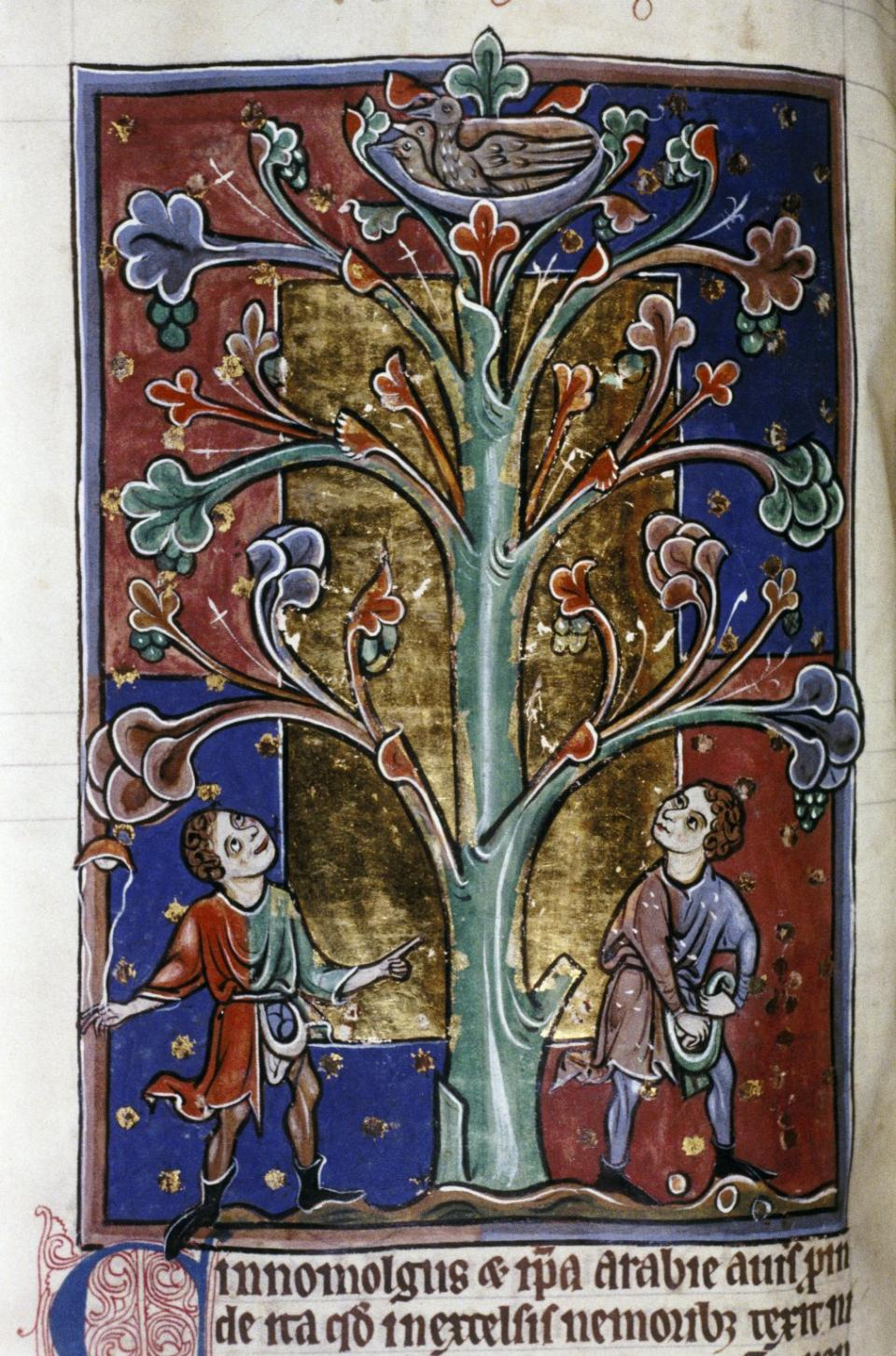 wonder the oxford medieval graduate conference bodley 764